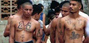 Honduran Gang Members